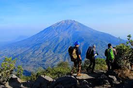 wisata mendaki gunung merapi