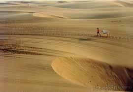gumuk pasir pantai parangtritis
